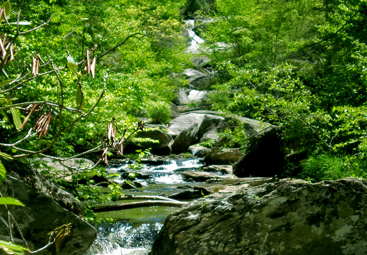 Waterfalls Near Blowing Rock