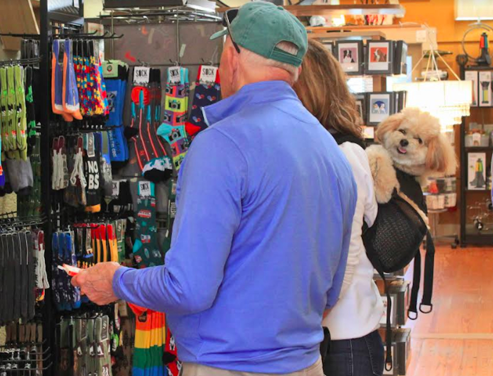 14 Shops to Take Your Pup